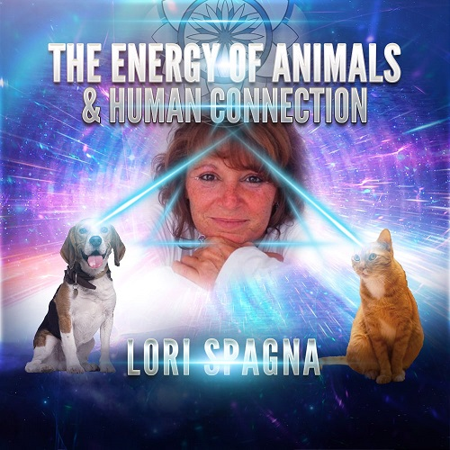 Lori Spagna: The Energy of Animals & Human Connection